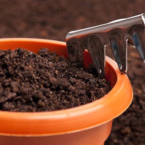 Macetas / Fertilizantes